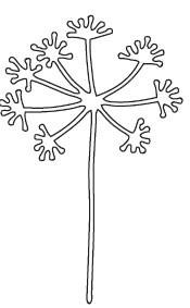 Wishing Flower Die (10090)