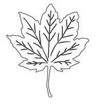 Fall Leaf (10127)