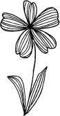 Striped Iris (1210e)