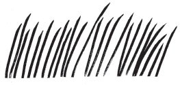 Windy Grass (1291h)