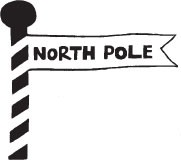 North Pole (1339g)
