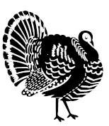 5434C - turkey