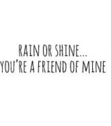 5561c - rain or shine