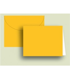 Mango Envelopes