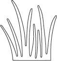 Grass Die (10004)