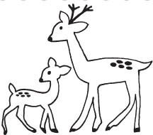 Deer Family (1329i)
