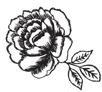 Graphic Camellia (1538i)