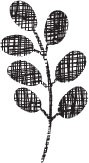 5175d - sm leafy stem crosshatch