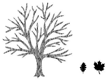 5326G - tree combo