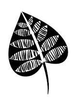 5433C - spade leaf