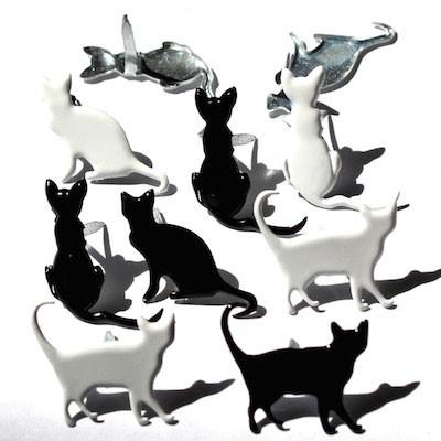 Cat Brads