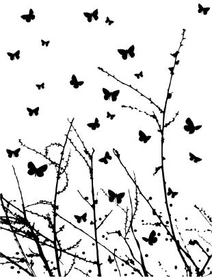 Butterfly Breeze (cs2208j)