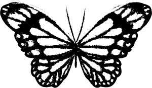 Sketch Form Butterfly (D2041)