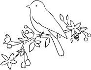 Gwendolyn Bird (E2036)