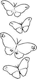 Butterfly Trail (E2044)
