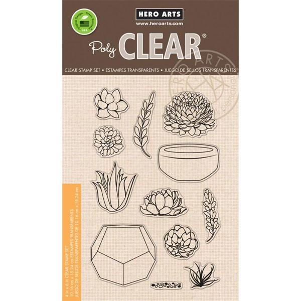 Hero Succulent Clear Set.