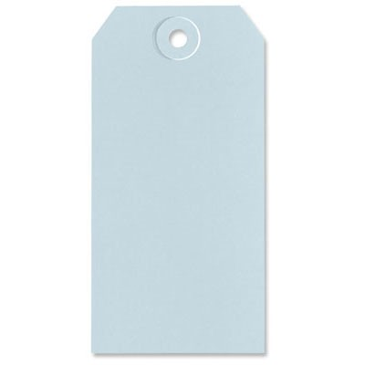 Lt Blue Shipping Tags