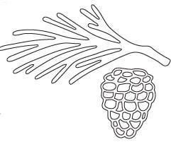 Savvy Branch/Pinecone Die (10037)