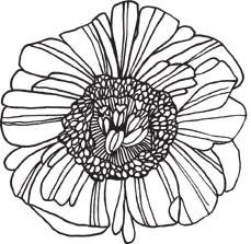 Lg Blossom Flower (1367j)