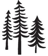 woodland trees (1439g)