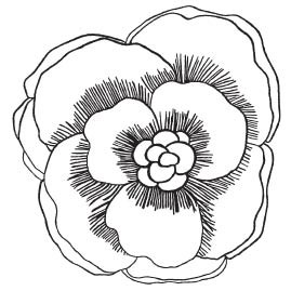 Savvy Rosewood Blossom (1586h)