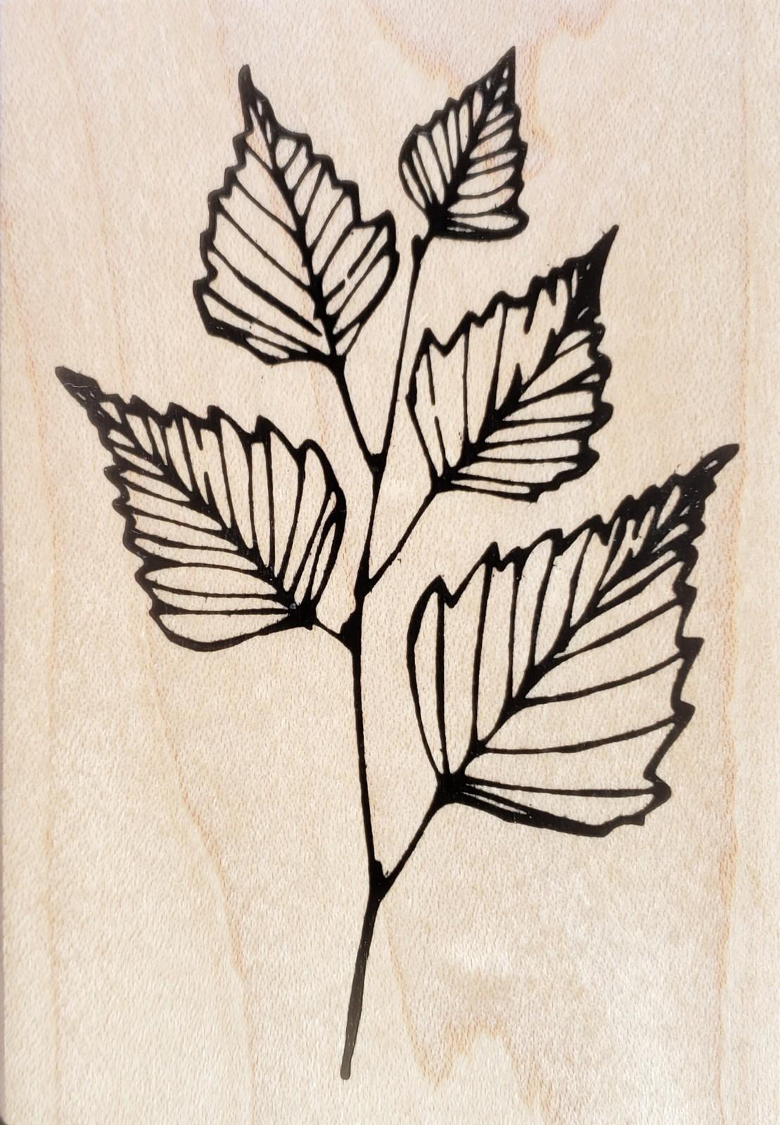 Fred B Mullett Birch Lines FRR-052