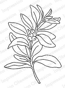 Berry Branch Small ioC20773