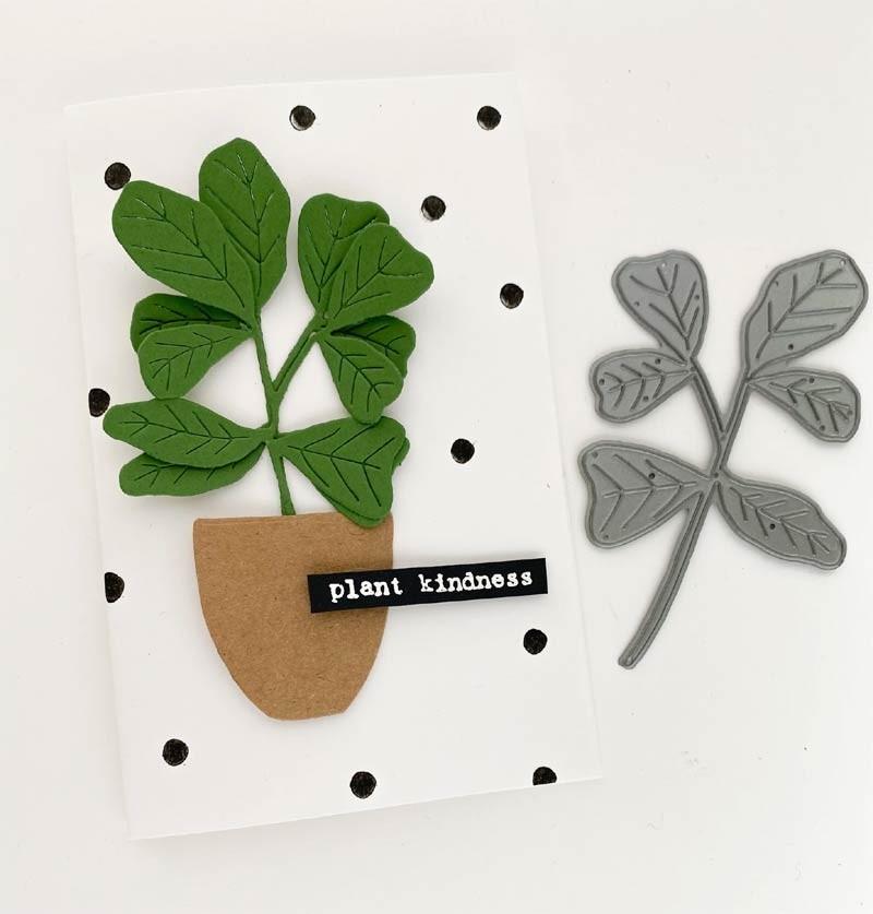 Flora and Fauna  Fig Leaf Plant Die 30166