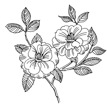 5475j - tree rose stamp