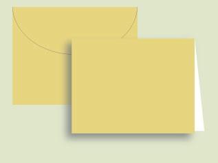 Squash Notecards