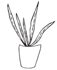 Savvy Stamps Aloe Plant 1641e
