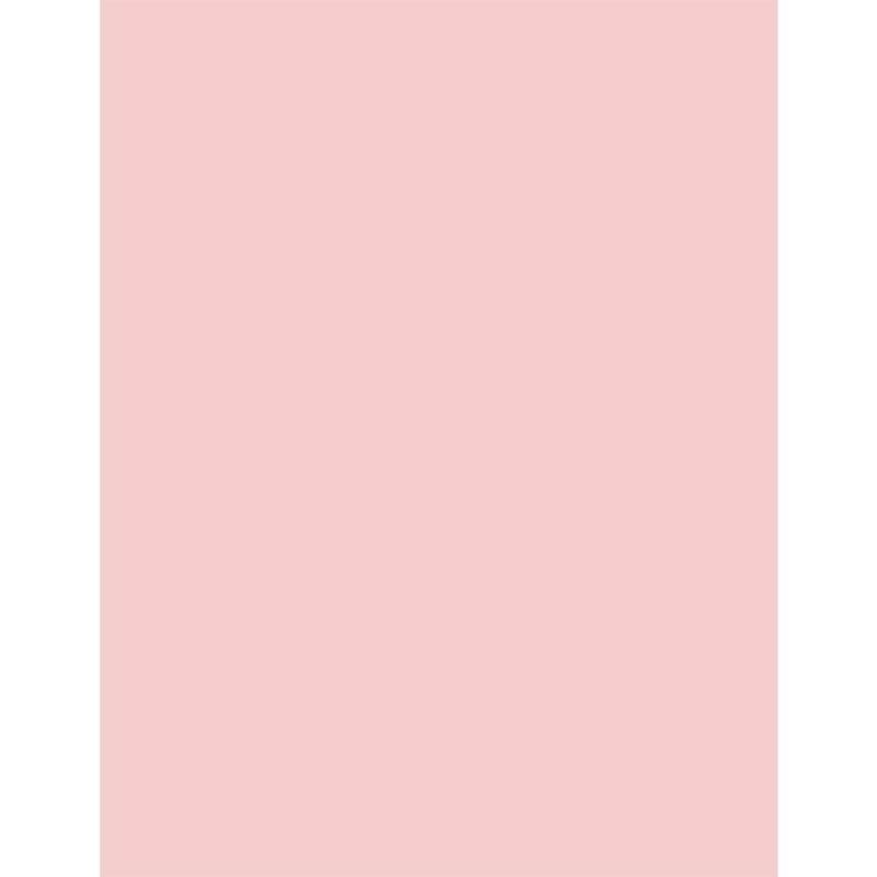 "Bazzill Card Shoppe Heavyweight Cardstock 8.5""X11"""