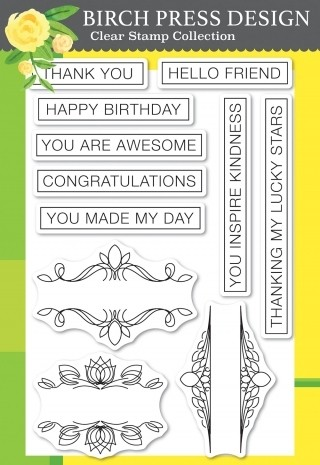 Birch Press Awesome Ticker Tape Messages clear stamp  cl8149