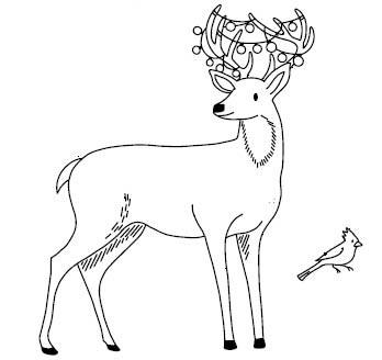5592g - friendly deer combo