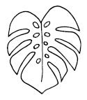 5694c - monstera outline