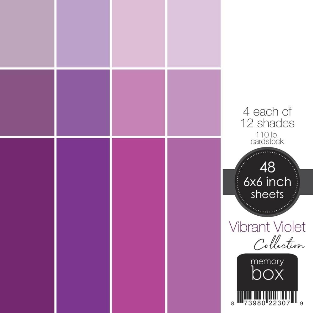 Vibrant Violet 6x6 pack