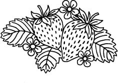 5691G - strawberry patch rubber stamp