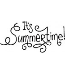 5593C - it's summertime lettering
