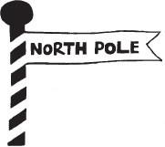 North Pole (1339g)