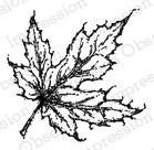 Leaf 1 ioC14237