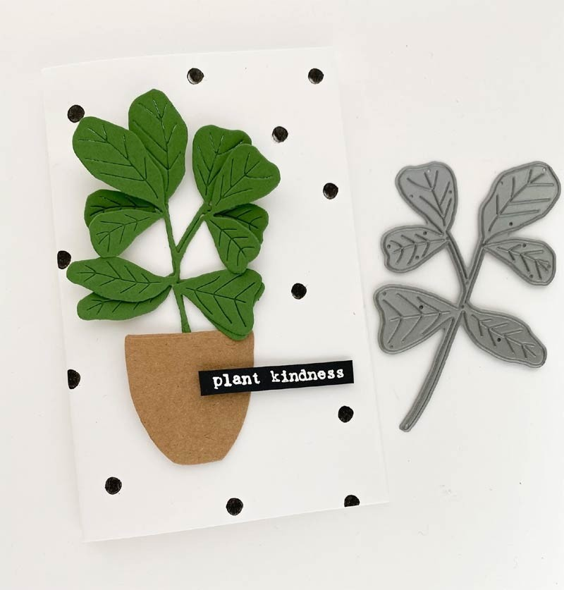 Flora and Fauna  Fig Leaf Plant Die 30166