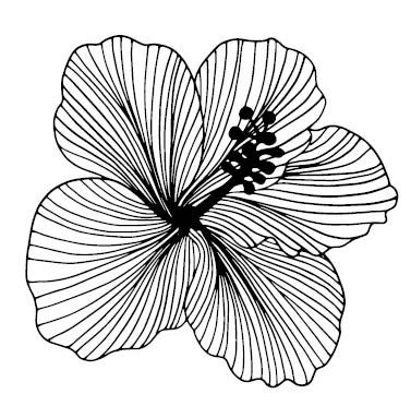 5636h - large hibiscus stamp