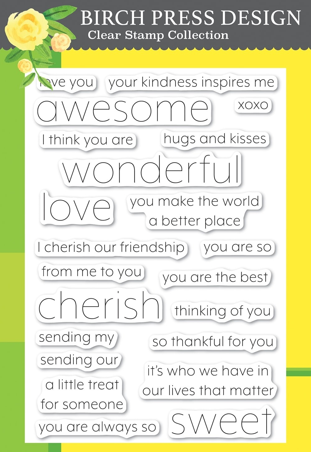 Birch Press You Are Awesome clear stamp set cl8151
