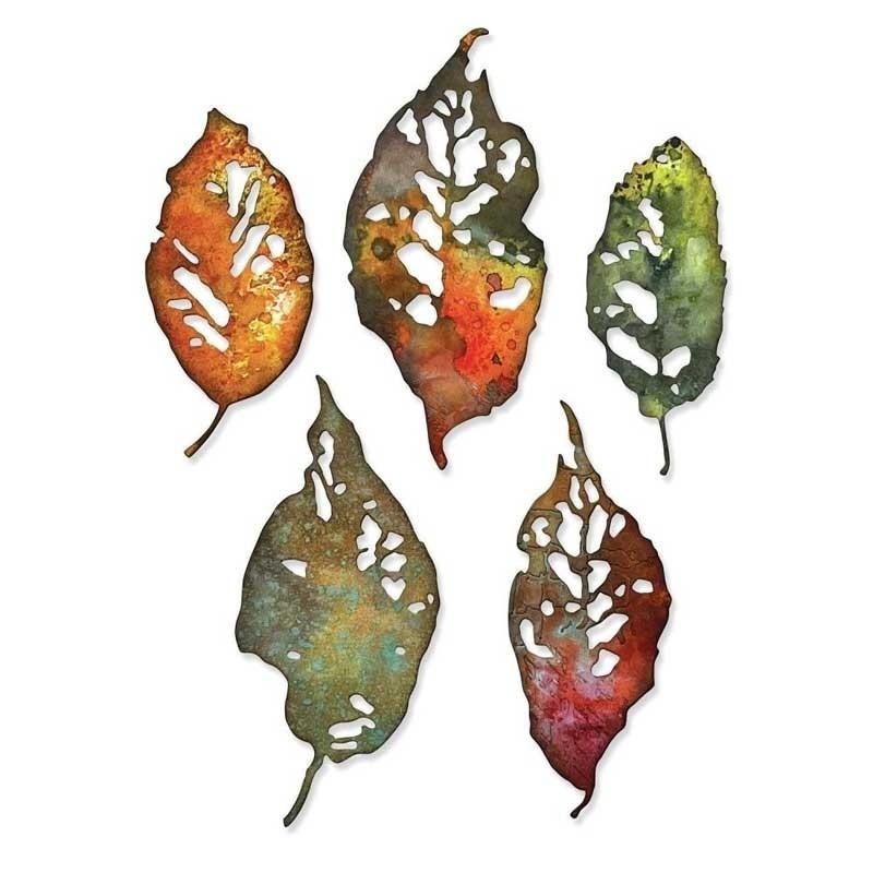 Sizzix Thinlits Dies By Tim Holtz - Leaf Fragments 665559