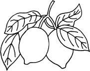 5689e - Lemons rubber stamp
