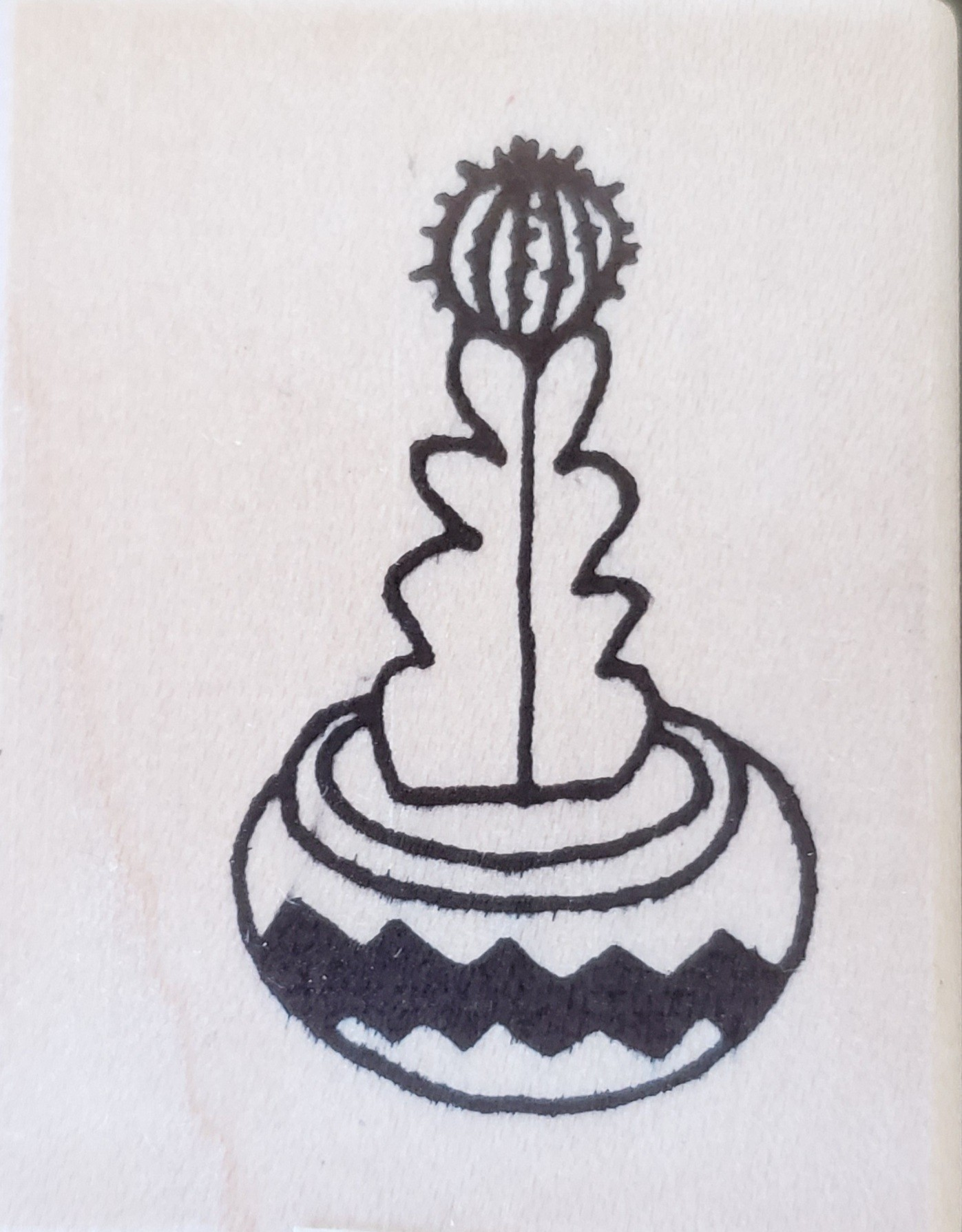 Rubbermoon Cactus