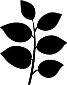 5286D - shaded leaves