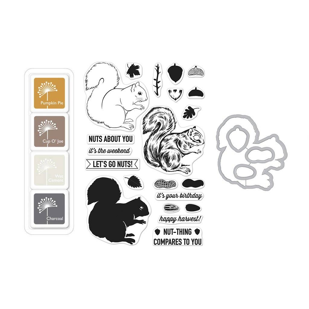Color Layering Squirrel Bundle
